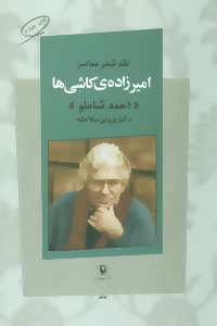 کتاب امیرزاده ی کاشی ها