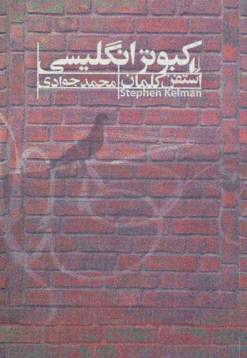 کتاب کبوتر انگلیسی
