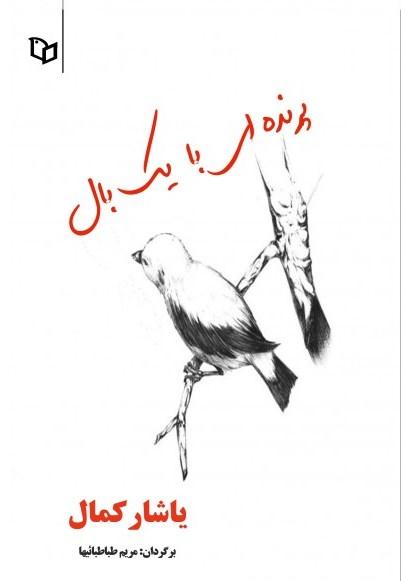 کتاب پرنده ای با یک بال
