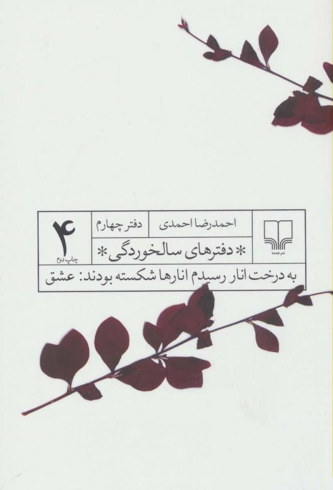 کتاب دفترهایی سالخوردگی 4