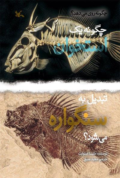 کتاب چگونه یک استخوان تبدیل به سنگواره می شود؟
